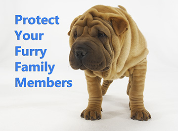 Protect your furry family members - SRVC